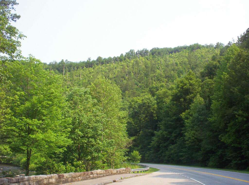 View at end of Skyway near Tellico Plains