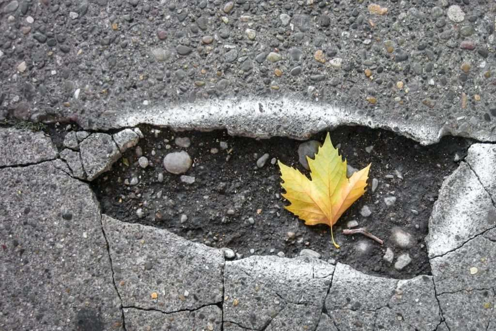 Pothole with a leaf in it